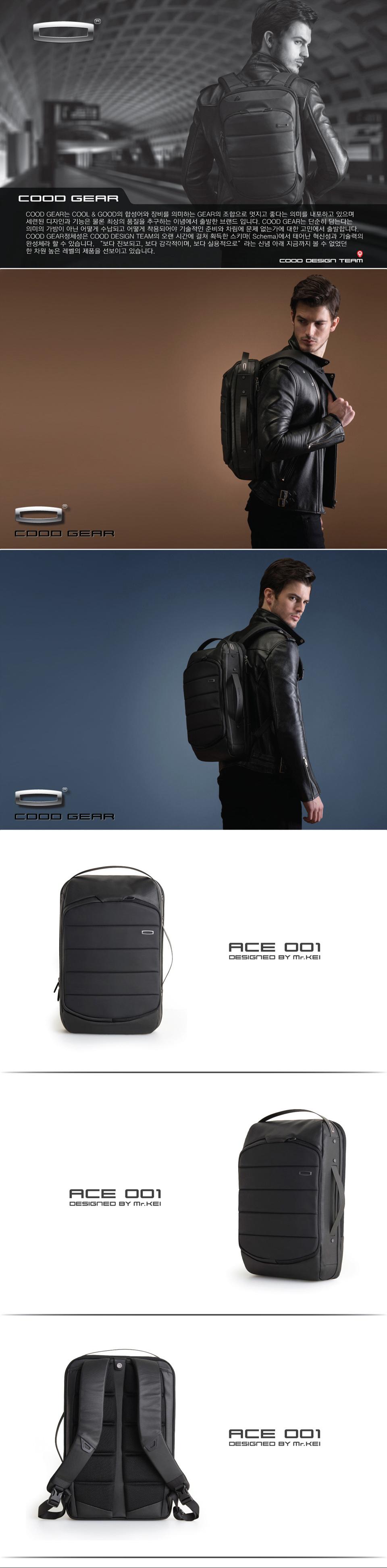 ACE001_1.jpg